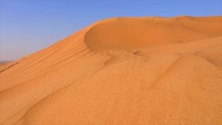 Desert landscape high hills on sandy dunes. Yellow sand dunes in hot wild desert