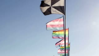 LGBT rainbow pride flags