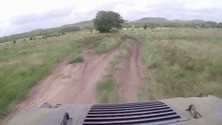 A driver's time lapse POV of riding in a backwoods trail in Texas on an ATV.