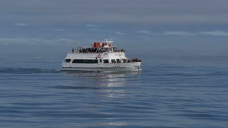 A tour boat carrying passengers looks for whales in the Pacific Ocean off the coast of San Diego, California.