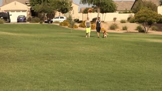 A young millennial couple walks their dogs in a typical Arizona neighborhood or public park.