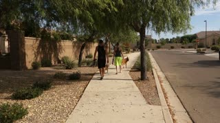 A young millennial couple walks their dogs through a typical Arizona neighborhood.