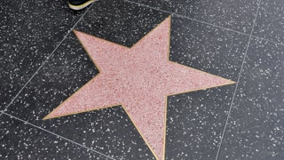Blank Star on the Walk of Fame