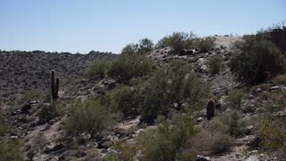 Desert Hike 3671