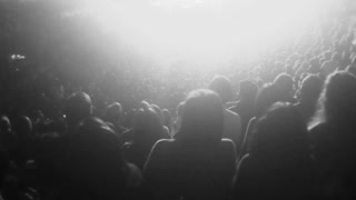Fans at a concert. Black and white stylized.