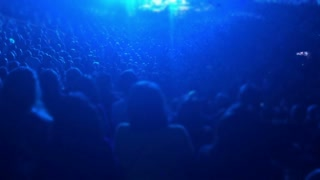 Fans at a concert. Slow motion, stylized.