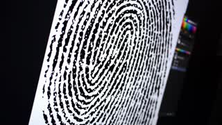 Fingerprint Examination 3599