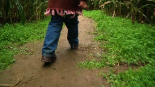 Girl Walks Thru Corn Maze 984