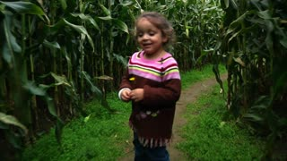 Girl Walks Thru Corn Maze 987