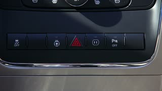 Car Dashboard Hazard Lights Detail