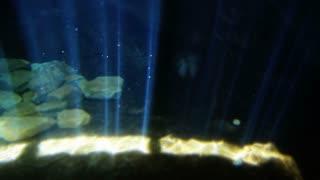 Light Beams on Ocean Floor 1852