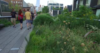 NEW YORK - Circa July, 2016 - Visitors walk on the High Line in Manhattan on a summer's day.