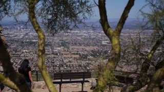 Phoenix Overlook 3676