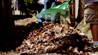 Raking Leaves 458