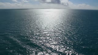 Summer Ocean Background Plate