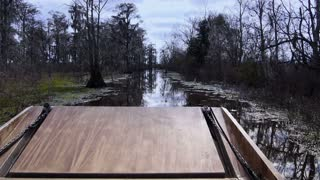 Swampland Airboat Passenger POV 4037