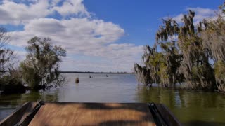 The Swamplands of Louisiana as Seen from an Airboat 4021
