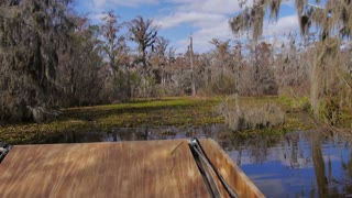 Tour Boat on a Swamp in Louisiana 4041