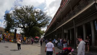 Tourists in the French Quarter during Mardi Gras 4076