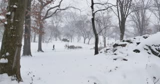 Tourists playfully walk the paths during a December snowstorm in Manhattan's Central Park.