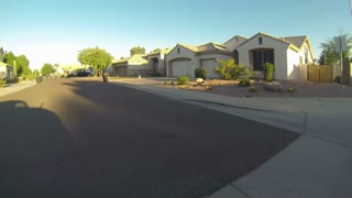 Typical Phoenix Neighborhood 3696