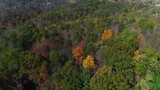 A daytime aerial flyover of colorful trees in Western Pennsylvania in early autumn.