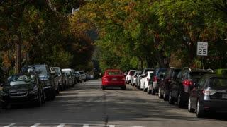 A rear view of a sports car traveling down a tree-lined upscale neighborhood street in the early Autumn.