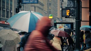 NEW YORK CITY - Circa October, 2017 - Pedestrians with umbrellas cross rainy W 34th Street in midtown Manhattan.