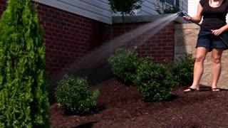 Watering Garden 916