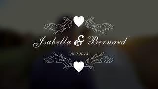 Wedding Titles V 5