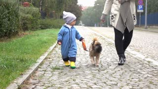 Baby boy is walking with mother and dog on a road, slow motion