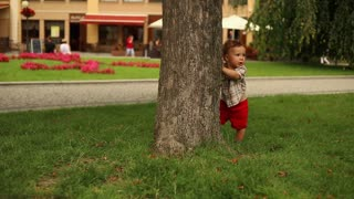 Sweet kid playing peek-a-boo near tree