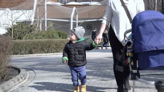 Family walking together in the zoological garden, slow motion shot at 240fps