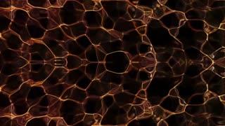 Fractal Vortex Loop Animation