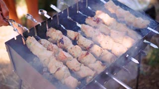 Barbecue With Delicious Grilled Meat On Grill. Roast Beef Kebabs On BBQ Grill. Summer Picnic Outdoors.