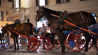 Carriages with horses in Piazza di Spagna, Rome, Italy. Carriage rides are a popular family friendly tourist attraction in historical towns. 4K (UHD).