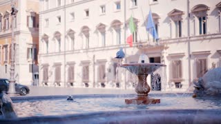 Rome fountain. White seagull standing on the fountain in the rome city on the central square near the house on which the flag of Italy and the European Union hang. italy fountain.