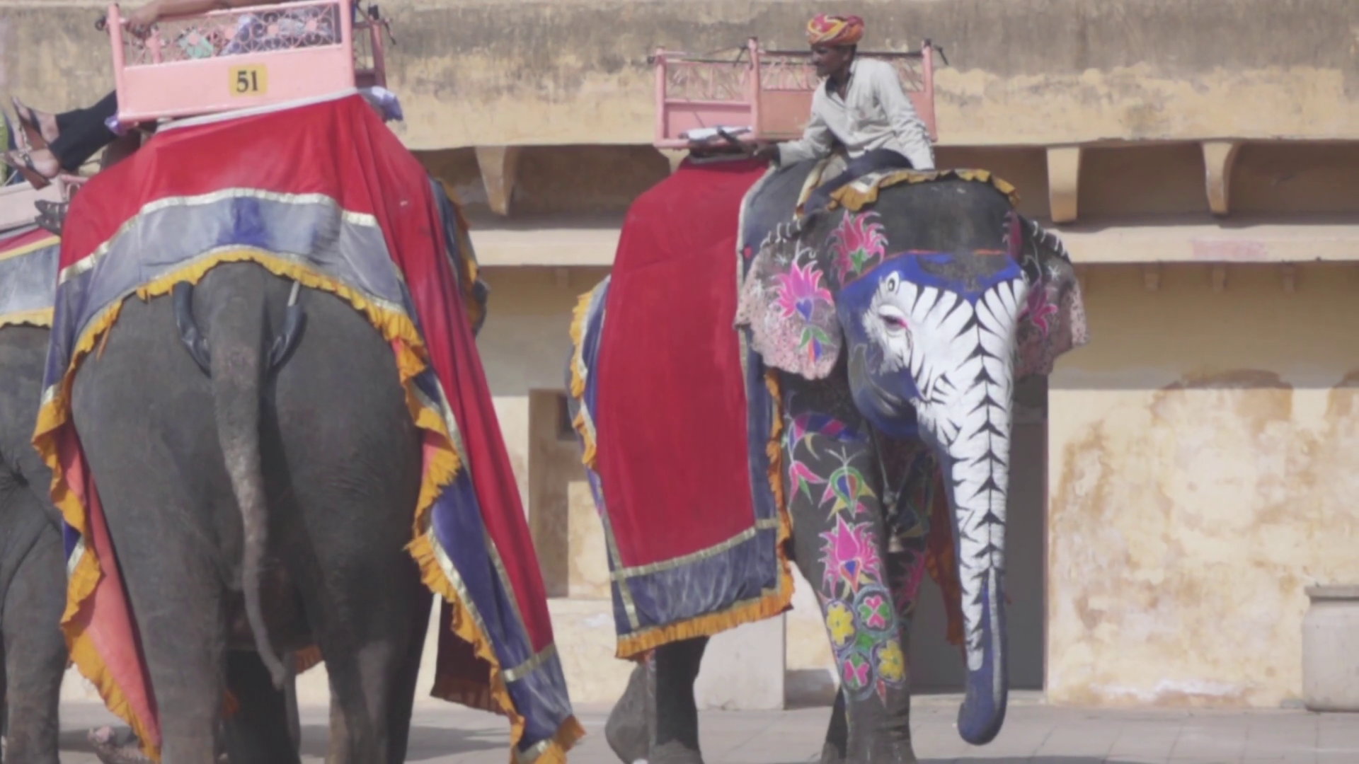 Amer Fort Jaipur Rajasthan India 30 Elephants In Slow Motion Stock Video Footage Storyblocks Lovepik provides 32000+ elephant png photos in hd resolution that updates everyday, you can free download for both personal and commerical use. storyblocks