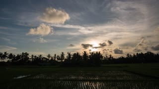 Bali Indonesia Rice Field Day To Night Sunset Stars Starry Night Time Lapse