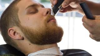 Mowing head in the men's barber shop