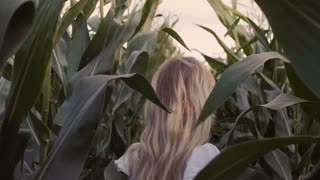 Pretty girl looks back passing through the corn