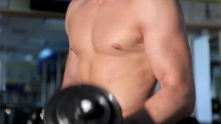 Men exercising for the biceps in gym