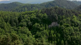 Panning up on Mountain landscape in summer with green trees