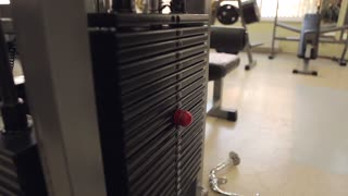 Training weights in gym room
