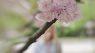 Attractive blonde girl in jeans jacket comes up to the blossoming cherry three and looks in camera, gives a cute smile. Female portrait. Outside shooting, spring time. Modern atmosphere.