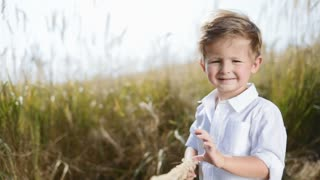 Adorable little kid standing in the middle of field, plays with natural wheat spike. Having fun, joyful mood, going for a walk. Summer, sunny weather. Happiness, positive emotions. Slow motion,