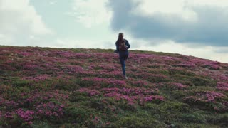 Back view of a young attractive woman with backpack climbing up the flowered mountain hill. Hill covered with pink lavender, cloudy sky. Nature beauty. Extreme lifestyle, hobby. Being happy.