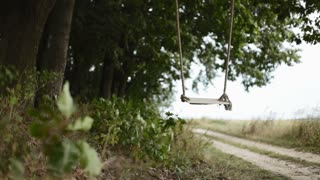 Empty wooden swing seat swaying under the strong wind in the oak grove. No people around. Harmony of nature, calmness, relaxation. Romantic atmosphere
