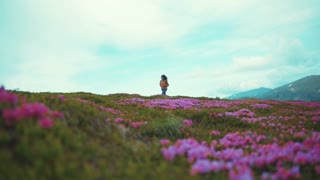 Fit young woman in jeans wear walks down the flowered blossoming mountain hill, takes of her backpack, continues walking. High snowy mountain peaks on the background. Wilderness, being free and happy.