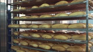 Fresh crispy bread loaves on the cooling rack. Bread making, manufacturing process.